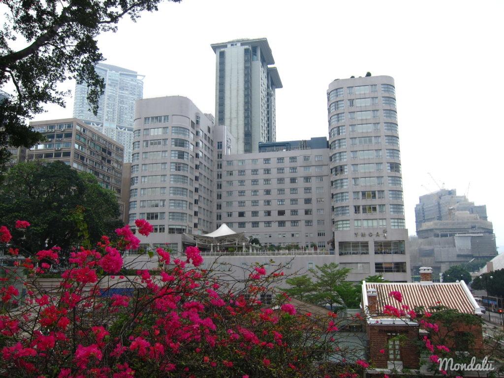 Batiments à Hong-Kong
