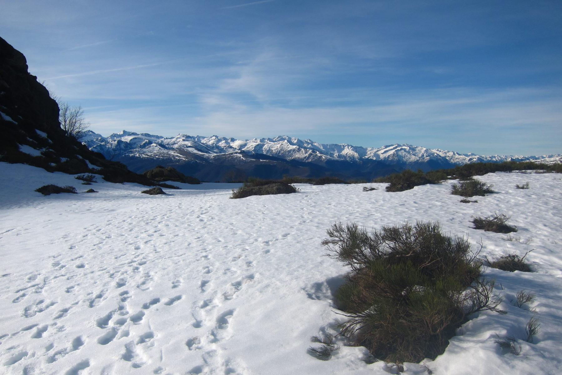 Photo de la randonnée hivernale à l'étang d'Appy